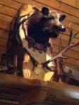 Boar's Head at a Slovakian Restaurant