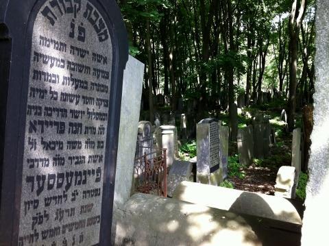Warsaw Jewish Cemetery