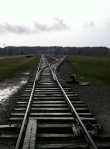 Birkenau Tracks