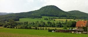 In Wienerwald